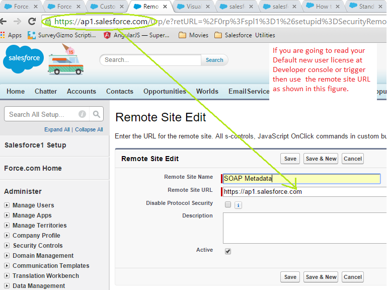 Setup Remote Site Setting